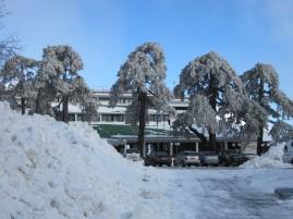 8 Feb 2012 - Troodos mountains, Cyprus (13)