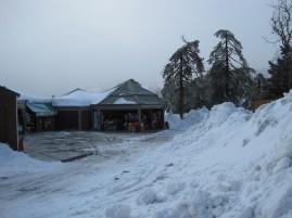 8 Feb 2012 - Troodos mountains, Cyprus (14)