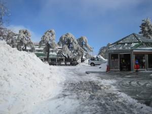 8 Feb 2012 - Troodos mountains, Cyprus (7)