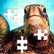 Cityscape Jigsaw Puzzles