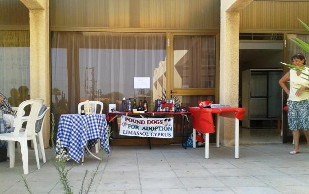 Pound Dogs for Adoption Limassol