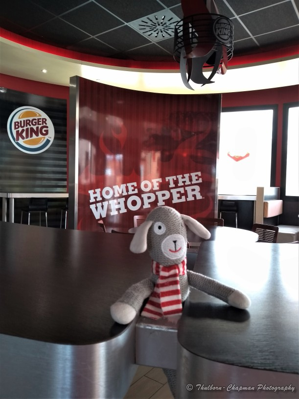 Little Man Travels by Thulborn-Chapman Photography (1) BurgerKing the Home of the Whopper, Benidorm (Cala de Finistrat)