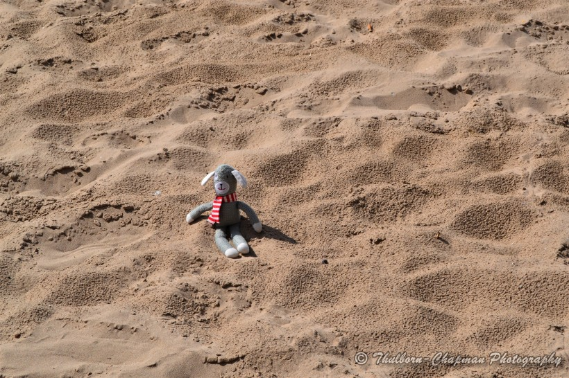 Little Man Travels by Thulborn-Chapman Photography (8) to the beach